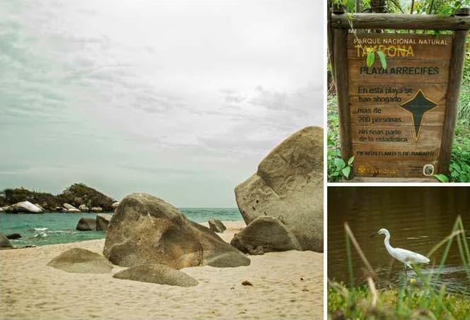 Fotos rtayrona arrecifes