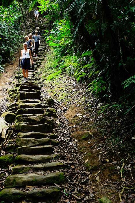 Foto camino de piedras
